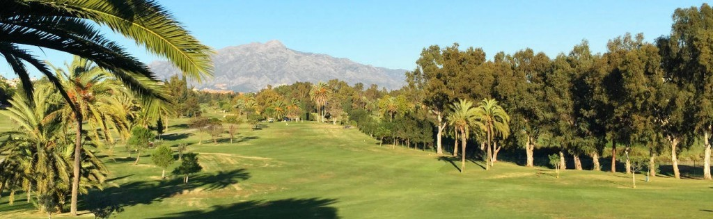 El Paraiso Golf