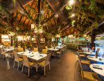 Apartments tropical restaurant